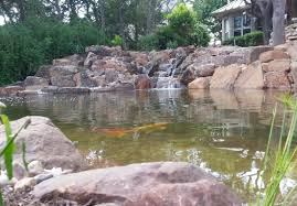Ecosystem Koi Pond Installation-Austin|Central|Texas|TX - Texas ... Backyard With Koi Pond And Stones Beautiful As Water Small Kits Garden Pond And Aeration Diy Ponds Waterfall Kit Lawrahetcom Filters Systems With Self Cleaning Gardens Are A Growing Trend Koi Ponds Design On Pinterest Landscape Prefab Fish Some Inspiring Ideas Yo2mocom Home Top Tips For Perfect In Rockville Images About Latest Back Yard Timedlivecom For Sale House Exterior And Interior Diy