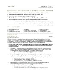 Marketing Director Resume Examples Sample Old Version Executive Samples Free Manager India