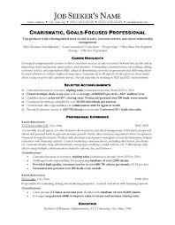 Resume Highlights Examples Gross Sales Pattern Sample Of Qualifications