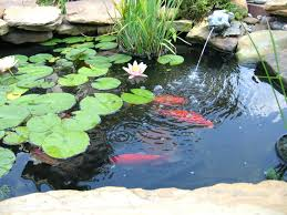 Koi Pond Backyard Pond Landscaping Ideas Fish Pond Design Ideas ... Backyard With Koi Pond And Stones Beautiful As Water Small Kits Garden Pond And Aeration Diy Ponds Waterfall Kit Lawrahetcom Filters Systems With Self Cleaning Gardens Are A Growing Trend Koi Ponds Design On Pinterest Landscape Prefab Fish Some Inspiring Ideas Yo2mocom Home Top Tips For Perfect In Rockville Images About Latest Back Yard Timedlivecom For Sale House Exterior And Interior Diy