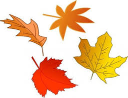 Fall Leaves Clip Art Free Preschool For Funny Print Coloring