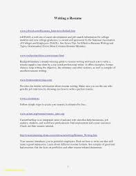 Bahrainpavilion2015 - Guide How To Create A Student Resume For College Cool Best Current College Student Resume With No Experience Good Simple Guidance For You In Information Builder Timhangtotnet How To Write A College Student Resume With Examples Template Sample Students Examples Free For Nursing Graduate Objective Statement Cover Format Valid Format Sazakmouldingsco