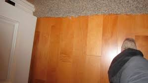 Flooring Transition Strips Wood To Tile by Carpet To Tile Transition Creative Carpet Repair