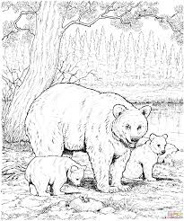 Black Bear Coloring Page American Bears Pages Free For Kids