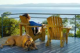 voyager avec un chien au québec ça se fait coups de coeur pour