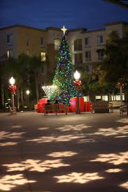 Ge Itwinkle Outdoor Christmas Tree by Best 25 Commercial Christmas Lights Ideas On Pinterest