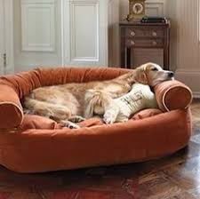 orvis lounger deep dish dog bed large dogs 60 120 lbs
