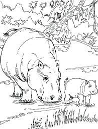 Coloring Pages Of Wild Animals U87443 Best The Big Five Images On Animal Pictures To