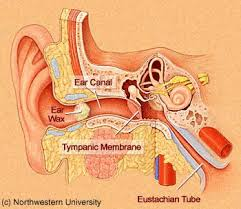 how to remove wax from ears ear wax treatment clinic