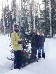 Griswold Christmas Tree by Us Forest Service Again Selling Christmas Tree Permits
