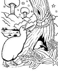 Kiwi Bird Keeping His Nest Safe Coloring Pages