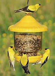 Clingers ly Bird Feeder Yellow