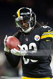 Steelers Behind The Steel Curtain by The Case For Cobi Hamilton Behind The Steel Curtain