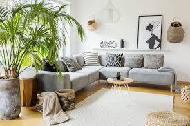 die unkomplizierte kentia palme bild 14 schöner wohnen