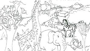 Wild Animal Coloring Pages Book Chameleon Click The