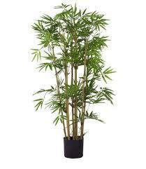 kunstpflanzen kunstpflanzen kaufen easyplants