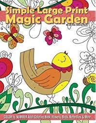 Simple Large Print Magic Garden Color By Number Adult Coloring Book Flowers Birds