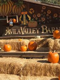 Cal Poly Pumpkin Patch San Luis Obispo by Avila Valley Barn San Luis Obispo All You Need To Know Before