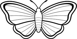Coloring Page Butterfly Free Printable Pages For Kids Download