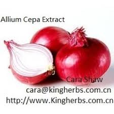 allium cepa extract china suppliers 217795