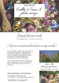 cuisine plantes sauvages cueillette et cuisine de plantes sauvages stage atelier a
