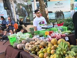 Aloun Farms Pumpkin Patch 2014 by The Top 10 Things To Do Near Aulani A Disney Resort U0026 Spa Kapolei