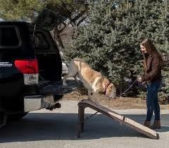 The Best Dog Ramps Reviewed - Helping You To Make The Right Choice Amazoncom Pet Gear Travel Lite Bifold Full Ramp For Cats And Extrawide Folding Dog Ramps Discount Lucky 6 Telescoping The Best Steps And For Big Dogs Mybrownnewfiescom Stairs 116389 Foldable Car Truck Suv Writers Fun On The Gosolvit Side Door Tectake Large Big Dogs 165 X 43 Cm 80kg Mer Enn 25 Bra Ideer Om Ramp Truck P Pinterest Building Animal Transport Solution With 2018 Complete List Of 38 With Comparison