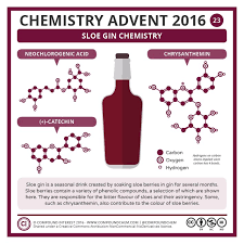 23 December Sloe Gin Chemistry For More On Check Out This Graphic