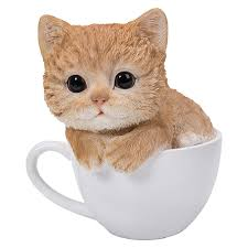 tea cup cat teacup animals border concepts