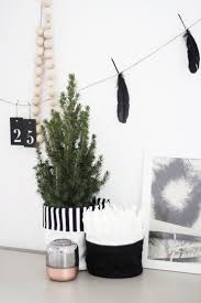 Silver Tip Christmas Tree Sacramento by 377 Best Images About C H R I S T M A S On Pinterest