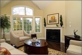 surprising light paint colors for living room design