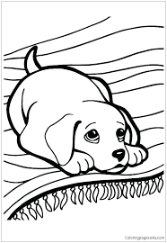 Husky Coloring Page Pages Puppy Cute Cartoon Realistic