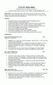 Nurse Resume Example Professional Rn