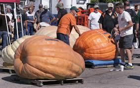 Half Moon Bay Pumpkin Festival Biggest Pumpkin by Photos 25 Giant Pumpkins To Celebrate Halloween Home And Garden