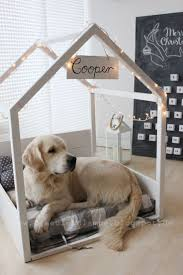 Dog Stairs For Tall Beds by 25 Best Diy Dog Bed Ideas On Pinterest Dog Beds Pet Beds And