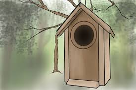 4 Ways To Deter Possums From Your Garden - WikiHow All About Opossums Wildlife Rescue And Rehabilitation Easy Ways To Get Rid Of Possums Wikihow Animals Articles Gardening Know How 4 Deter From Your Garden Possum Hashtag On Twitter Removal Living In Sydney Opossum Removal Services South Florida Nebraska Rehab Inc Help Nuisance Repel Gel Barrier Sealant For Squirrels And Raccoons To Of Terminix