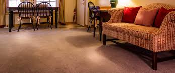 professional carpet cleaning brandon riverview valrico