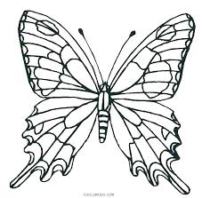 Black Swallowtail Butterfly Coloring Page E Free Pages Of Butterflies F