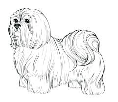Realistic Dog Coloring Pages Pictures