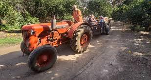 Pumpkin Patch Rides by What U0027s Going On In Your Community La Verne Mortgage Manfro