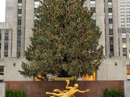 Rockefeller Center Christmas Tree Facts by Rockefeller Center Christmas Tree Guide Plus What To Do Nearby