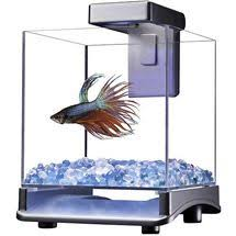 Lava Lamp Fish Tank Walmart by New Marina Betta Aquarium Starter Kit Fish Bowl Tank Beta Goldfish