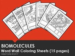 Biomolecules Biochemistry Word Wall Coloring Sheets 15 Pages