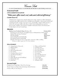 Profile Resume Examples For College Students