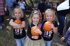 Hillcrest Farms Pumpkin Patch by Field Trips