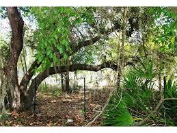 Florida Tile Grandeur Nature by Orlando Florida Real Estate U0026 Homes For Sale Nectar Real Estate