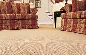 Conscientious Carpet Care by Steve U0027s Carpet Care Carpet Cleaning Wilmington Oh
