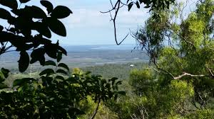 100 Agnes Water Bush Retreat 52 McGHEE CRESCENT QLD 4677 Vacant Land For Sale