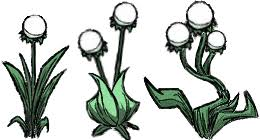 Image Light Flower All Don t Starve game Wiki