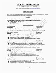 New Teacher Resume Template Word Samples Substitute Examples
